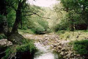 Il rapporto sul Turismo-natura 2008 riscopre le aree protette italiane