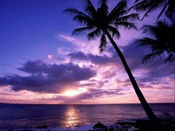 Obiettivo Tropici ricerca personale da impiegare nei propri villaggi turistici