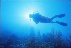 Le immersioni per le donne, un modo per saziare ancor di più la voglia di scoperta