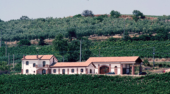 Angelo D'Uva Vignaiuolo in Larino presenterà il 31 maggio le sue etichette durante la giornata delle Cantine Aperte, un connubio tra musica e vino
