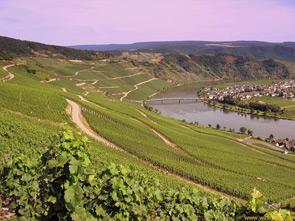 Sulle orme di Bacco, le città storiche della Germania tra arte, cultura, vino e buona musica