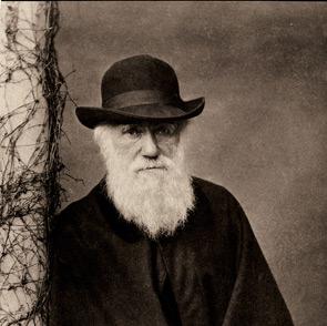 Charles Darwin al Castello normanno-svevo: mostra sul padre dell'evoluzionismo