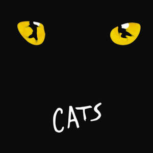Cats, il musical in Italia non graffia…. incanta