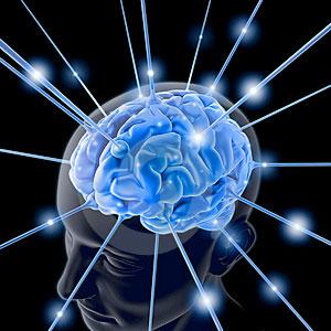 Percezione, il cervello crede di più a quello che vede che a quello che sa
