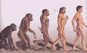 l'Homo Sapiens, quali le cause della scomparsa del nostro diretto antenato