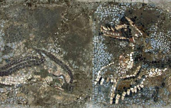 Ritrovato un meraviglioso mosaico a Monasterace Marina nell'antica Kaulonia