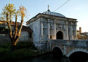 Tommaso_Treviso