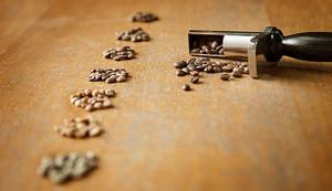 leccecaffè