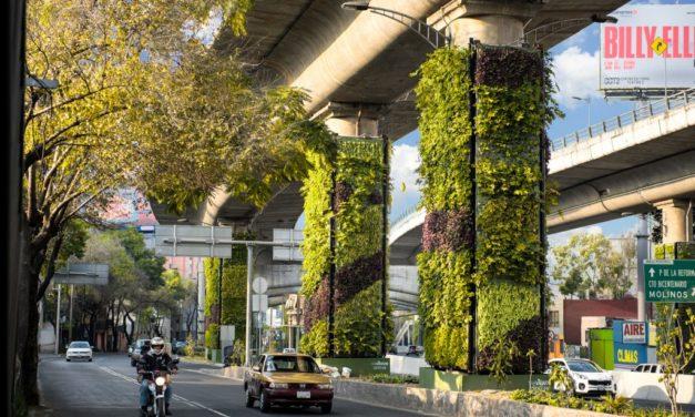 """il futuro """"Solarpunk"""", i giardini verticali di Città del Messico"""