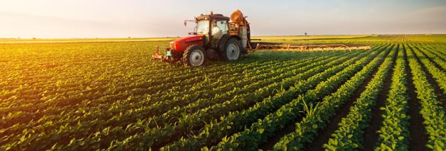 Agricoltura: 2021 anno del Biologico?