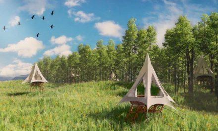 O2 Treehouse lancia una catena BnB di case sugli alberi