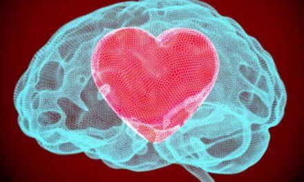La kisspeptina è l'ormone dell'amore