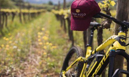 Fra vigne, calici e location da sogno, l'enoturismo è su Winelivery