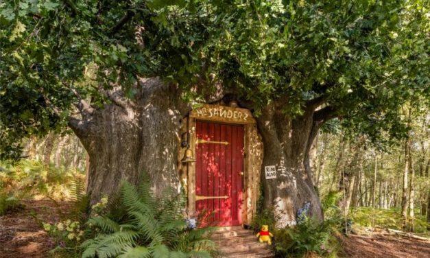 """Il 24 e 25 settembre la casa di Winnie the Pooh in Inghilterra si trasforma in un """"Bearbnb"""""""
