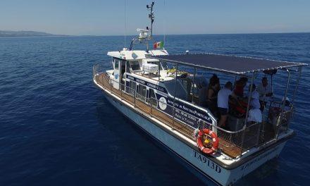 """Si presenta il 6 ottobre """"BioTourS"""" il progetto Interreg IPA CBC Italia-Albania-Montenegro alla ricerca dei delfini"""